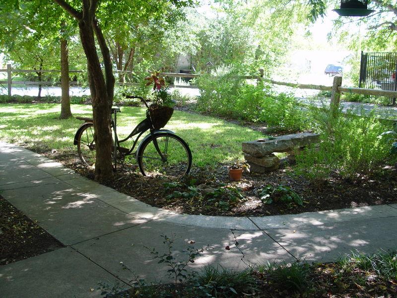 D.Bike