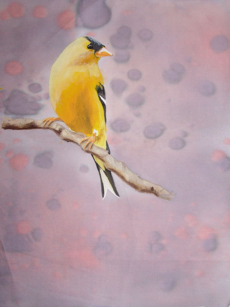 Aff bird